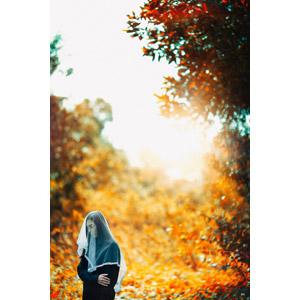 フリー写真, 人物, 女性, ベール, 腕を抱える, 俯く(下を向く), 人と風景, 紅葉(黄葉), 秋