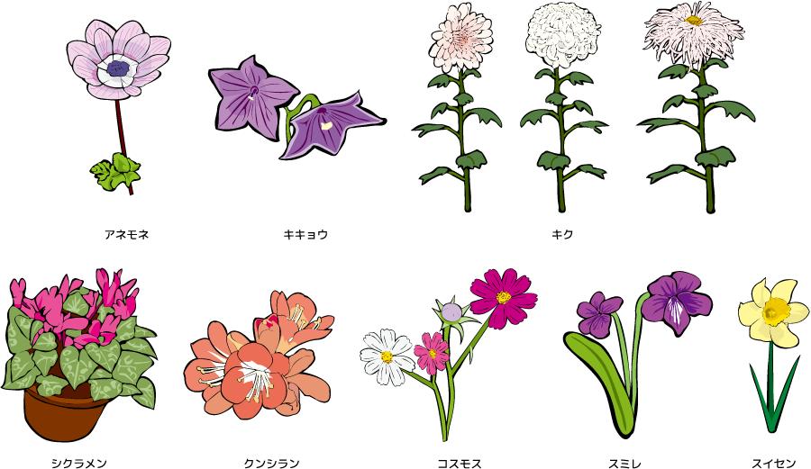 フリーイラスト キクやスミレやスイセンなどの8種類の花のセット