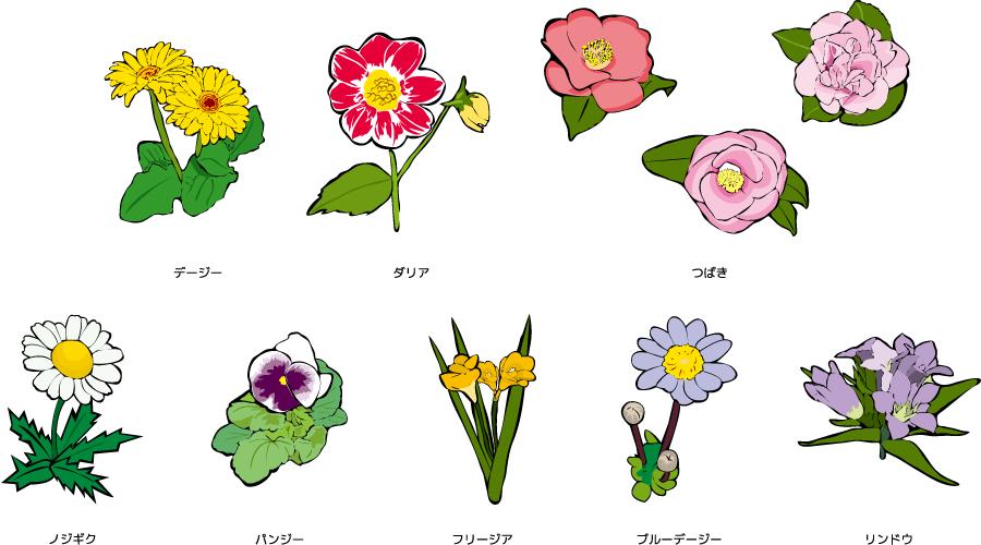 フリーイラスト デージーやパンジーやつばきなどの8種類の花のセット