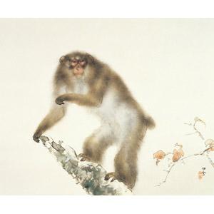 フリー絵画, 橋本関雪, 動物画, 哺乳類, 猿(サル), ニホンザル, 秋