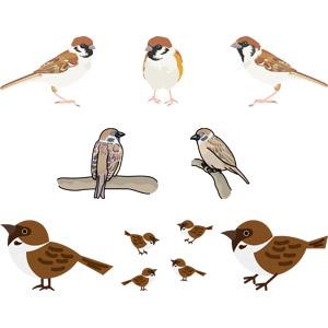 フリーイラスト, ベクター画像, AI, 動物, 鳥類, 鳥(トリ), 雀(スズメ)