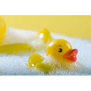 フリー写真, 玩具(おもちゃ), 人形, ラバーダック, お風呂, 泡