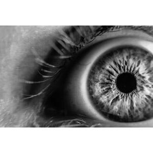 フリー写真, 人体, 目(眼), モノクロ