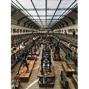 フリー写真, 風景, 建造物, 建築物, 博物館(美術館), フランスの風景