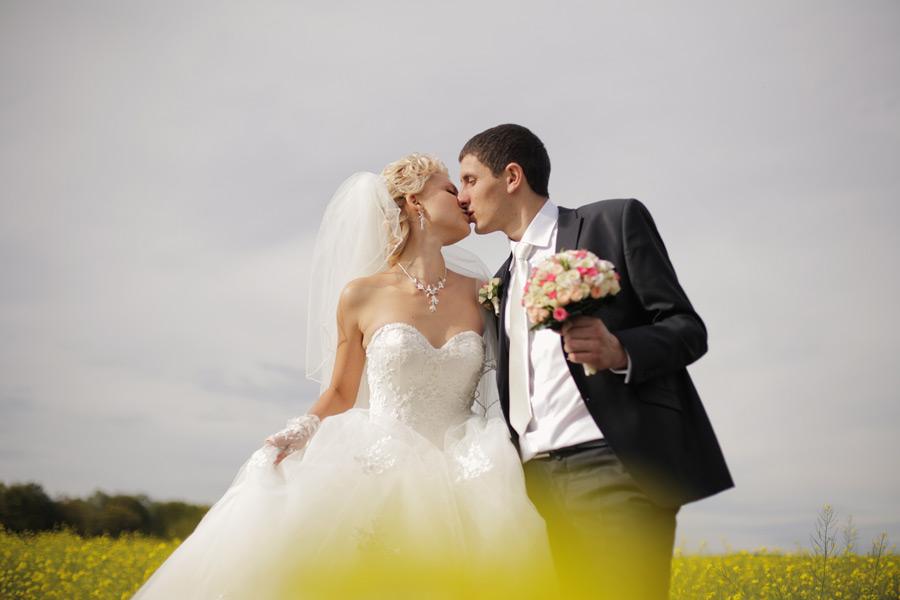フリー写真 菜の花畑でキスをする新郎新婦