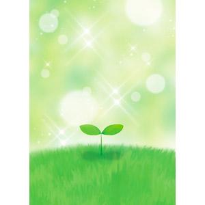 フリーイラスト, 植物, 新芽, 光(ライト), 輝き, 玉ボケ, 緑(グリーン)