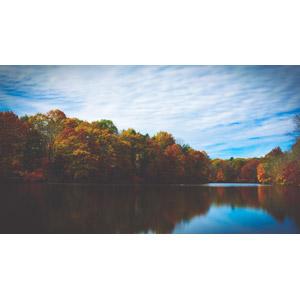 フリー写真, 風景, 自然, 湖, 森林, 紅葉(黄葉), 秋, アメリカの風景, ニュージャージー州