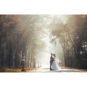 フリー写真, 人物, カップル, 花婿(新郎), 花嫁(新婦), 結婚式(ブライダル), 二人, タキシード, ウェディングドレス, 愛(ラブ), キス(口づけ), 人と風景, 並木道, 霧(霞)