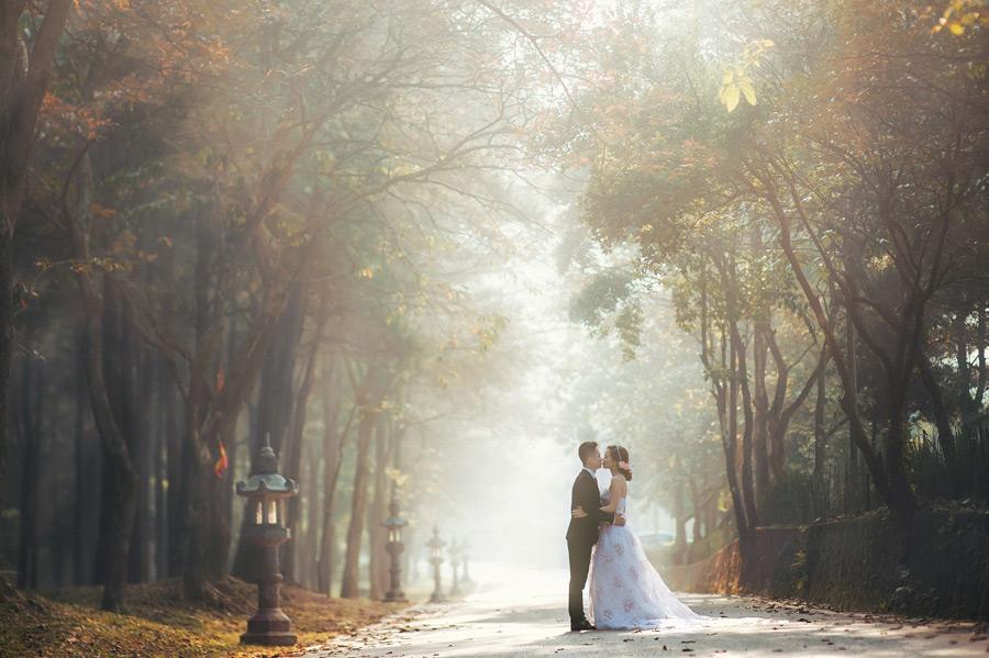 フリー写真 並木道でキスをする新郎新婦