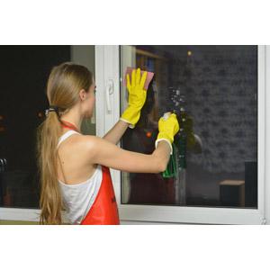 フリー写真, 人物, 女性, 外国人女性, 女性(00092), 掃除(清掃), 掃除用洗剤, 拭き掃除, 窓辺, 後ろ姿, 年末大掃除
