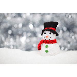 フリー写真, 人形, 雪だるま, 冬