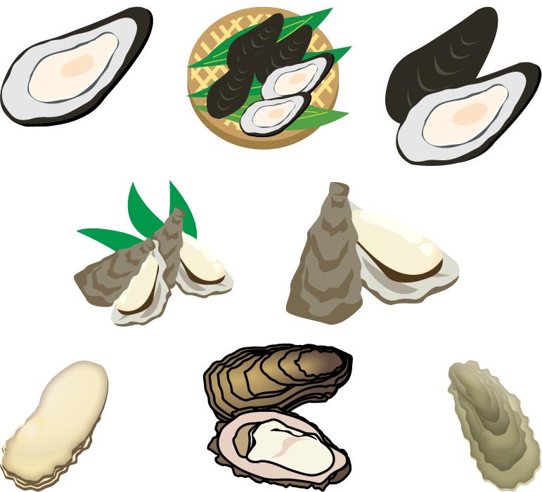 フリーイラスト 8種類の牡蠣のセット