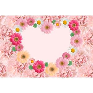 フリー写真, 背景, フレーム, ハートフレーム, ハート, 植物, 花, ガーベラ, カーネーション