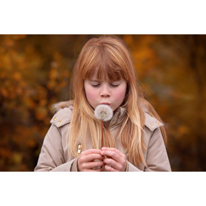 フリー写真, 人物, 子供, 女の子, 外国の女の子, 女の子(00236), 植物, 綿毛, 息を吹く