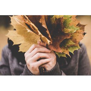 フリー写真, 人物, 人体, 手, 植物, 葉っぱ, 落葉(落ち葉), 秋