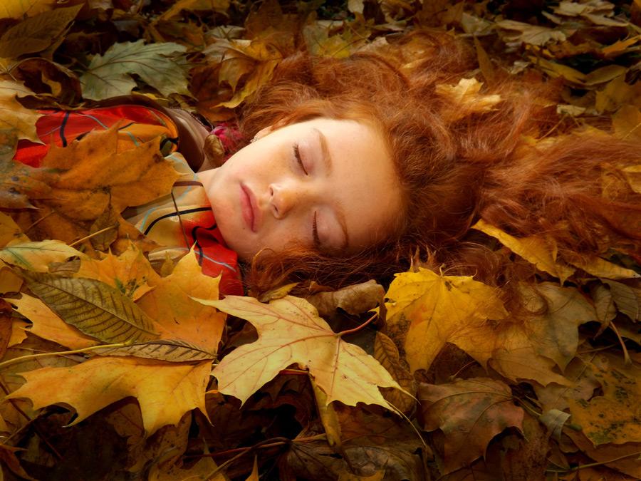 フリー写真 落ち葉に埋もれて眠る女の子