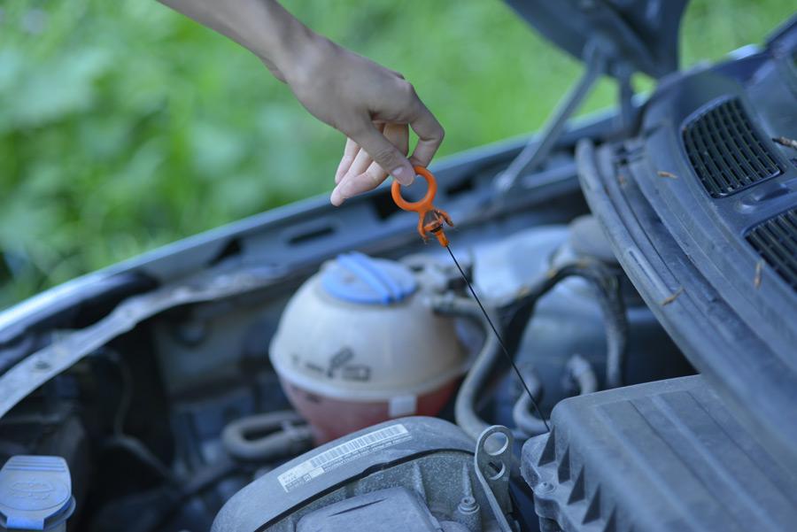 フリー写真 自動車のエンジンオイルをチェックする手
