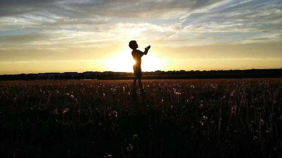 フリー写真 夕暮れの草むらと子供のシルエット