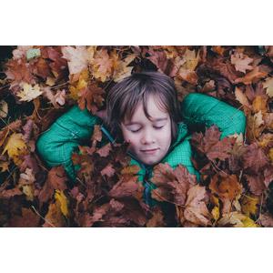 フリー写真, 人物, 子供, 男の子, 外国の男の子, 植物, 葉っぱ, 落葉(落ち葉), 寝る(寝顔)