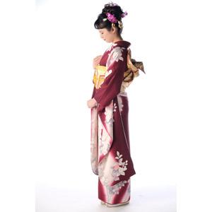 フリー写真, 人物, 女性, アジア人女性, 日本人, 女性(00047), 和服, 着物, 成人式, 正月, 1月, 白背景, 横顔