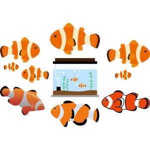 フリーイラスト, ベクター画像, AI, 動物, 魚類, 魚(サカナ), 熱帯魚, カクレクマノミ, 水槽