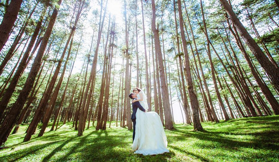 フリー写真 森の木々と新婦を抱き上げる新郎