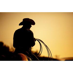 フリー写真, 人物, 男性, 職業, カウボーイ, 縄(ロープ), カウボーイハット, 帽子, 乗馬, 後ろ姿, セピア色