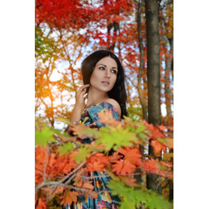 フリー写真, 人物, 女性, 外国人女性, ロシア人, 紅葉(黄葉), 秋