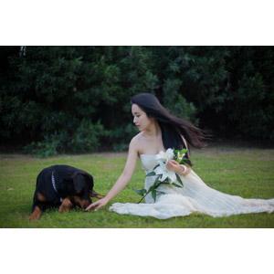 フリー写真, 人物, 女性, アジア人女性, 中国人, ウェディングドレス, 人と動物, 動物, 哺乳類, 犬(イヌ), ロットワイラー, 人と花, 百合(ユリ), 座る(地面), 女性(00112)