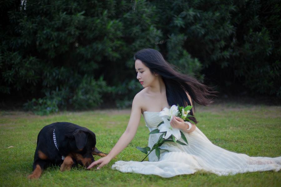フリー写真 犬とウェディングドレス姿の女性