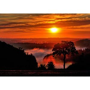 フリー写真, 風景, 朝日(朝焼け), 朝日, 朝焼け, 樹木, ドイツの風景