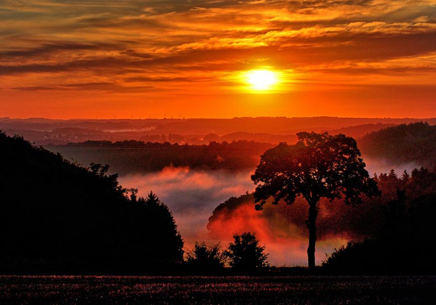 フリー写真 朝霧と朝日の風景