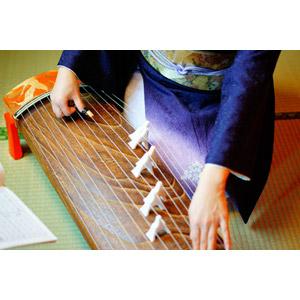 フリー写真, 人体, 手, 和服, 着物, 音楽, 楽器, 琴(こと), 和琴, 演奏する