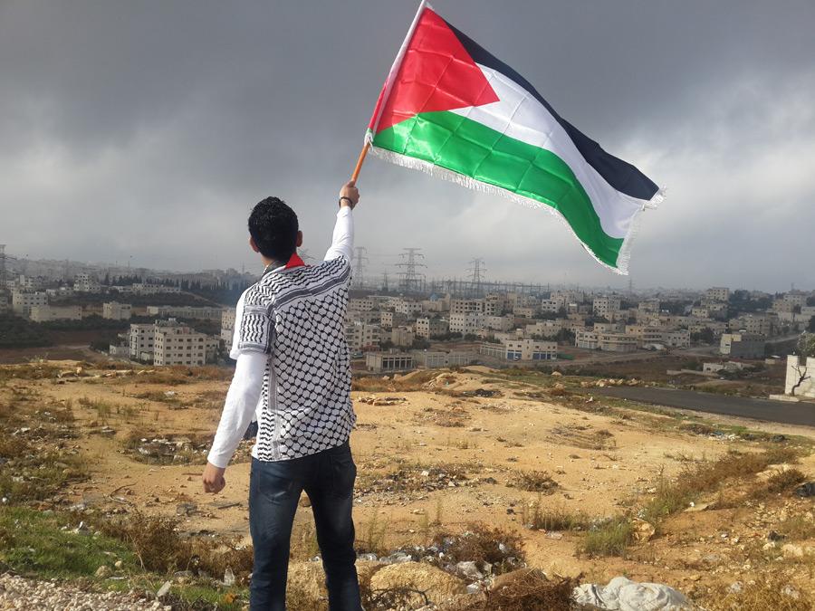 フリー写真 パレスチナ自治政府の国旗を掲げる男性