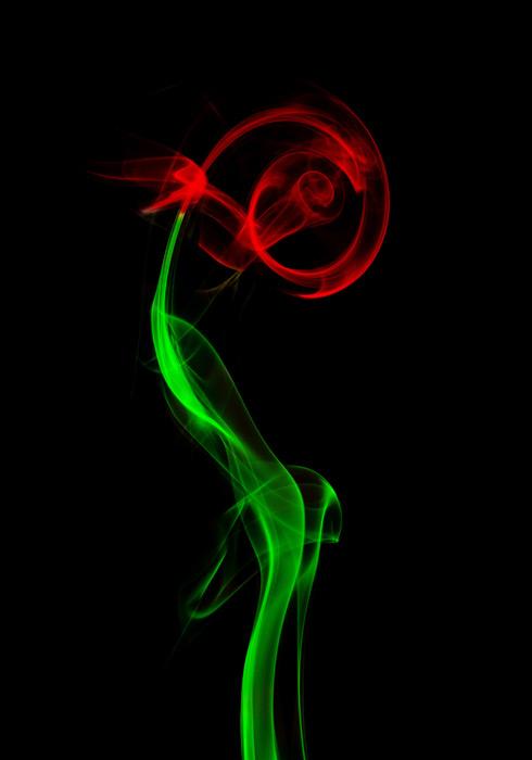 フリー写真 煙の薔薇