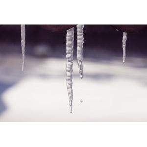 フリー写真, 風景, 氷柱(つらら), 水滴(雫), 冬