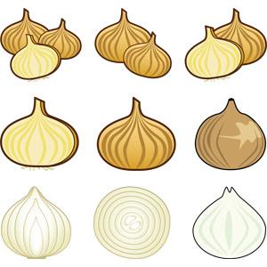 フリーイラスト, ベクター画像, AI, 食べ物(食料), 野菜, 玉ねぎ(タマネギ)