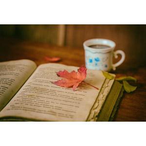 フリー写真, 本(書籍), 落葉(落ち葉), 葉っぱ, もみじ(カエデ), 飲み物(飲料), コーヒー(珈琲), コーヒーカップ