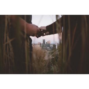 フリー写真, カップル, 恋人, 愛(ラブ), 手, 人と風景, 高層ビル, 都市, 街並み(町並み), 草むら