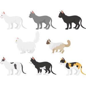 フリーイラスト, ベクター画像, AI, 動物, 哺乳類, 猫(ネコ), 白猫, 黒猫, 白黒猫, 三毛猫, ペルシャ猫, シャム猫