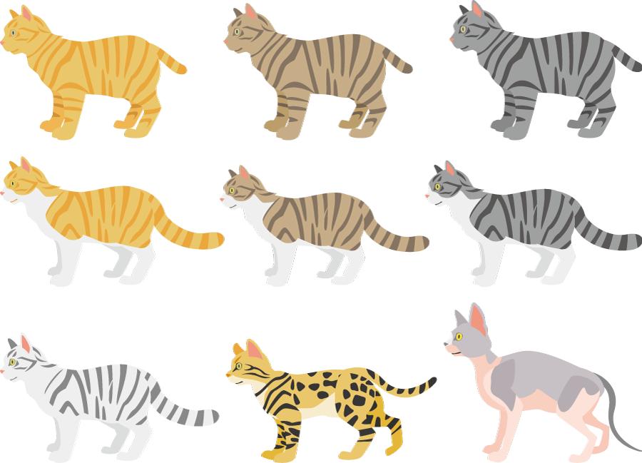 フリーイラスト トラ猫やベンガルやスフィンクスなどの9種類の猫のセット