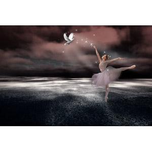 フリー写真, フォトレタッチ, 人物, 女性, 外国人女性, バレエ, バレリーナ, 踊る(ダンス), 鳩(ハト), 白い鳩