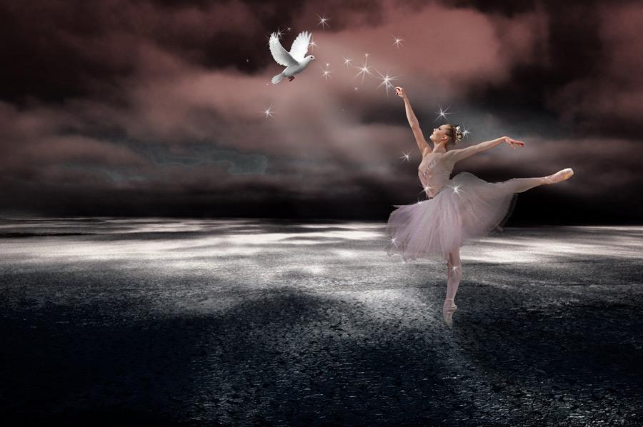 フリー写真 踊るバレリーナと白い鳩