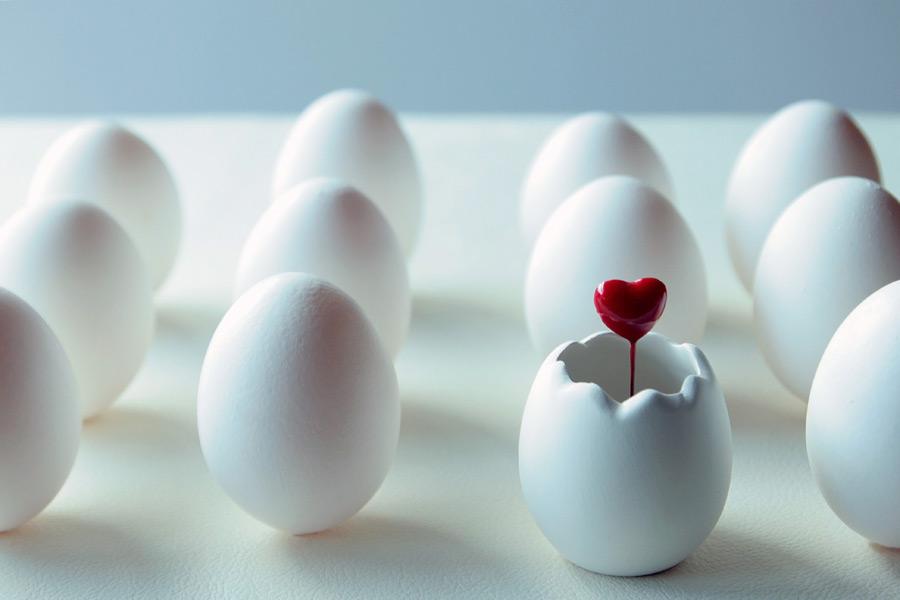 フリー写真 並んだ卵とハート