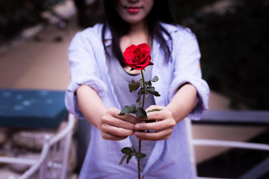 フリー写真 バラの花を差し出す女性