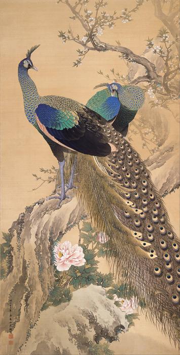 フリー絵画 今尾景年作「春園雙孔雀図」