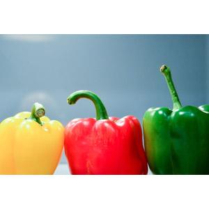 フリー写真, 食べ物(食料), 野菜, ピーマン, パプリカ