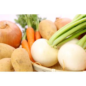フリー写真, 食べ物(食料), 野菜, 蕪(カブ), 玉ねぎ(タマネギ), じゃがいも(ジャガイモ), 人参(ニンジン)