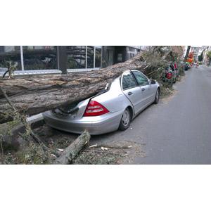 フリー写真, 災害, 自然災害, 竜巻(トルネード), 倒木, 乗り物, 自動車, 破壊