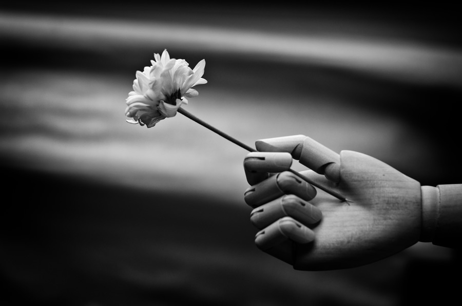 フリー写真 一輪の花を持つ人形の手